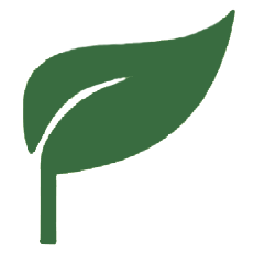 Fav-Icon-Green.png